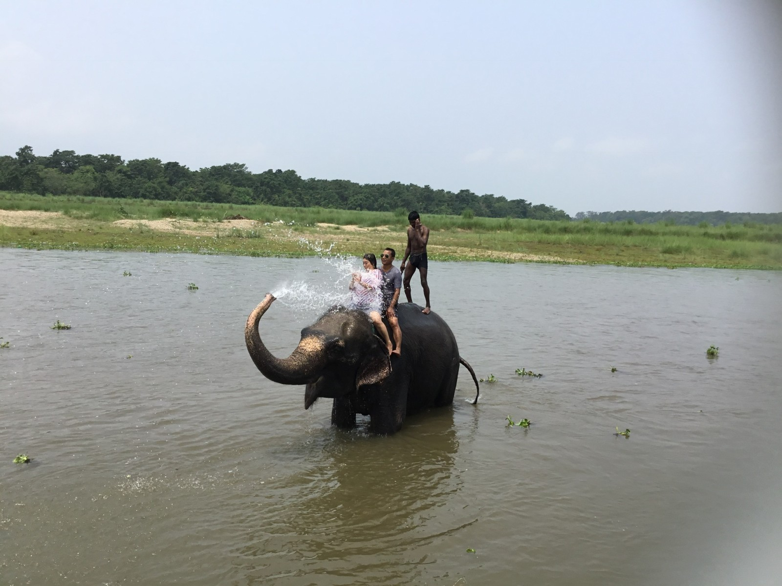 Chitwan Jungle Safari $300/-