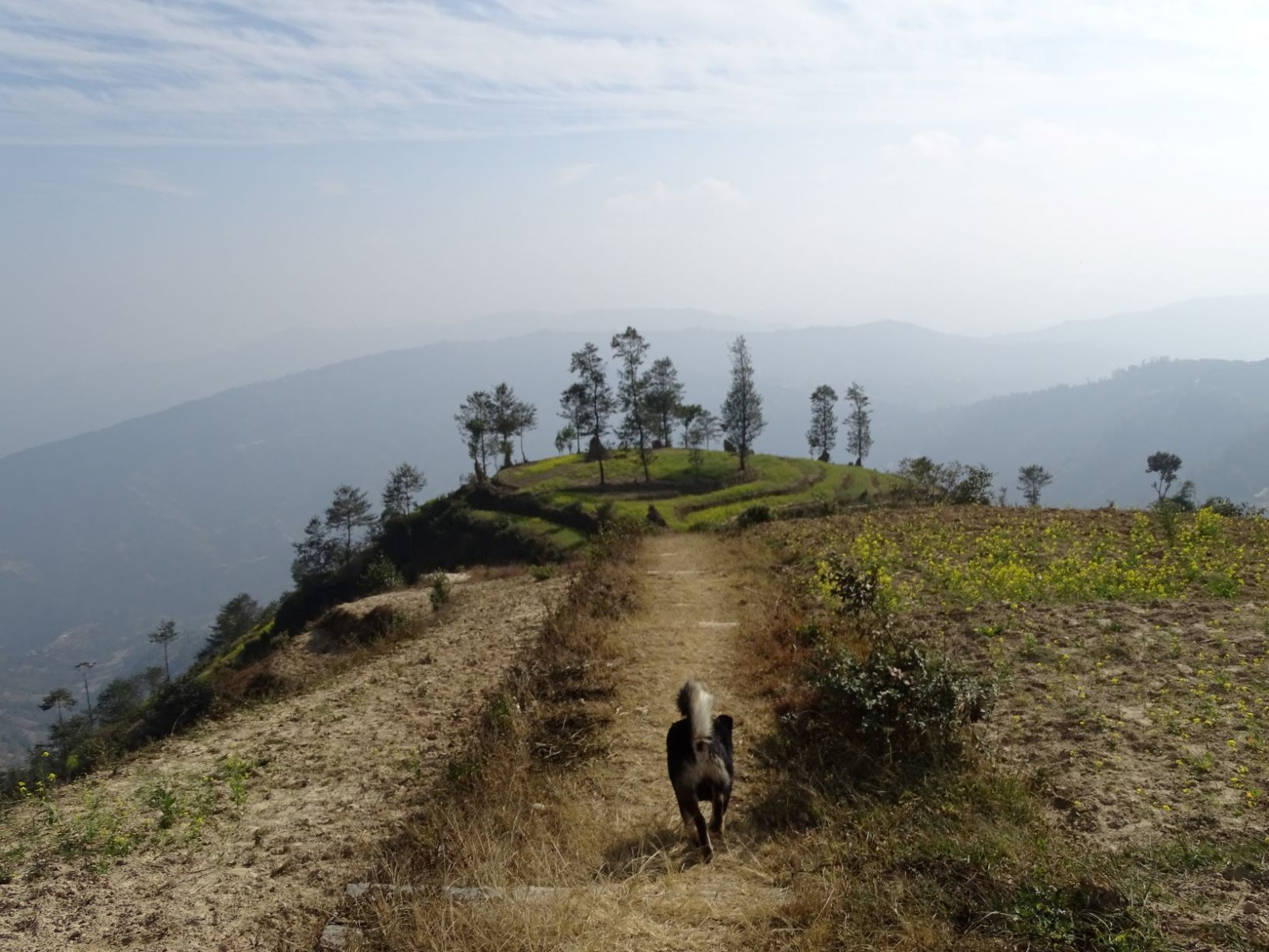 Hiking Dhulikhel - Nagarkot $95 per person (Minimum 2 person in a group)